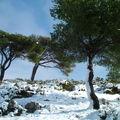 Calanques sous la neige