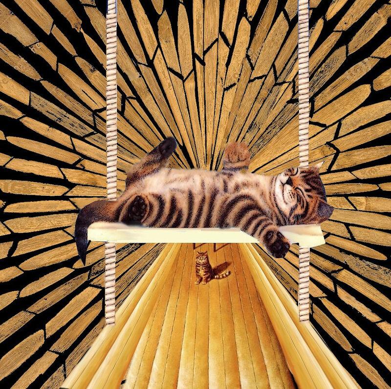 carte chat sieste estivale
