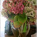 Encore des fleurs en novembre...