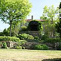 jardin botanique (88).JPG