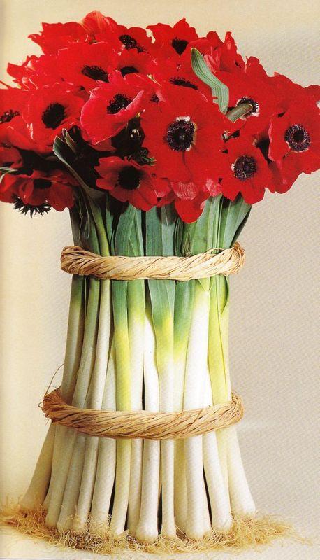 poireaux fleuris d'anémones