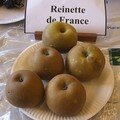 Reinette de France