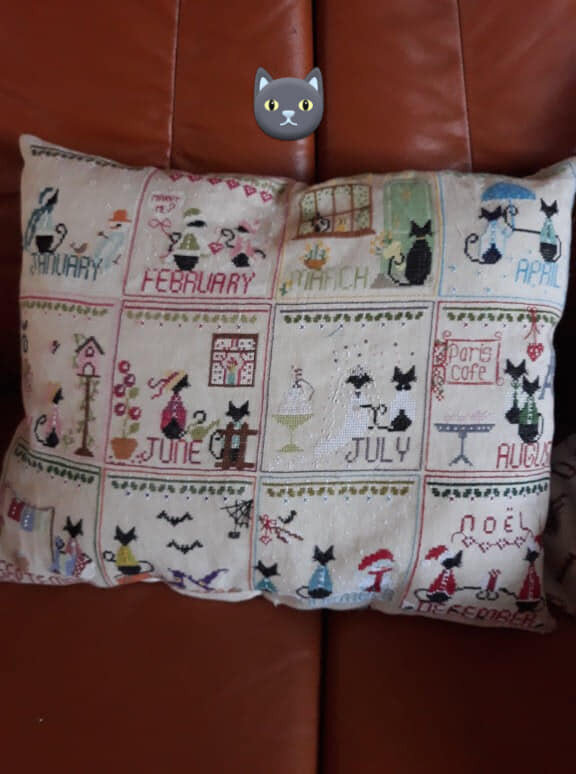 coussin chat 12 mois