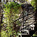 Photo du mois: escalier