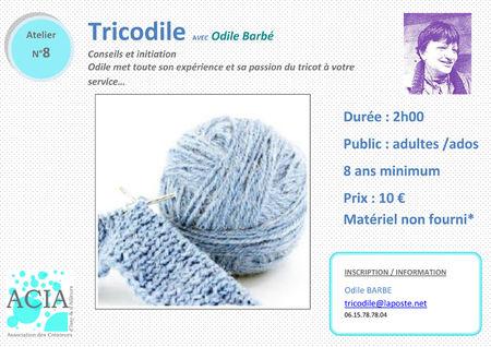 fiche8modif_initiationtrico_odile_sept2011