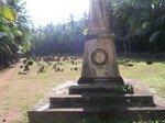 Guyane_0034