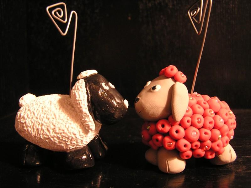 Moutons photos