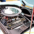 FORD THUNDERBIRD (2)_GF