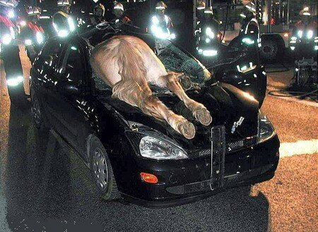 airbag3nl