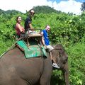 Thailande - Trek et elephants