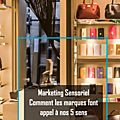 Marketing sensoriel, comment les marques font appel à nos 5 sens