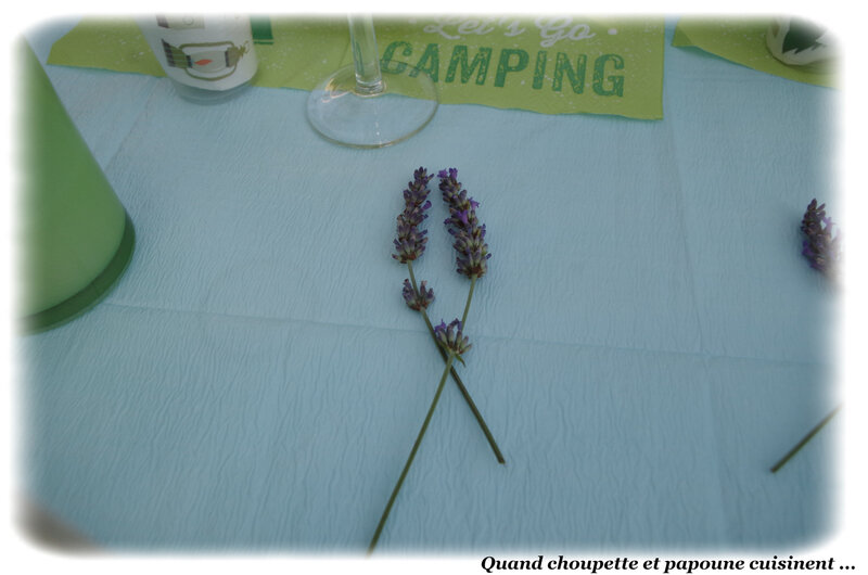 Ma table du camping-9893