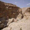 Le Wadi serpente