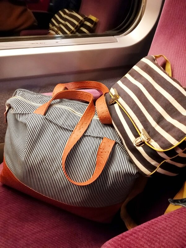 sac dans train