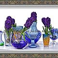 Blue shades hyacinth