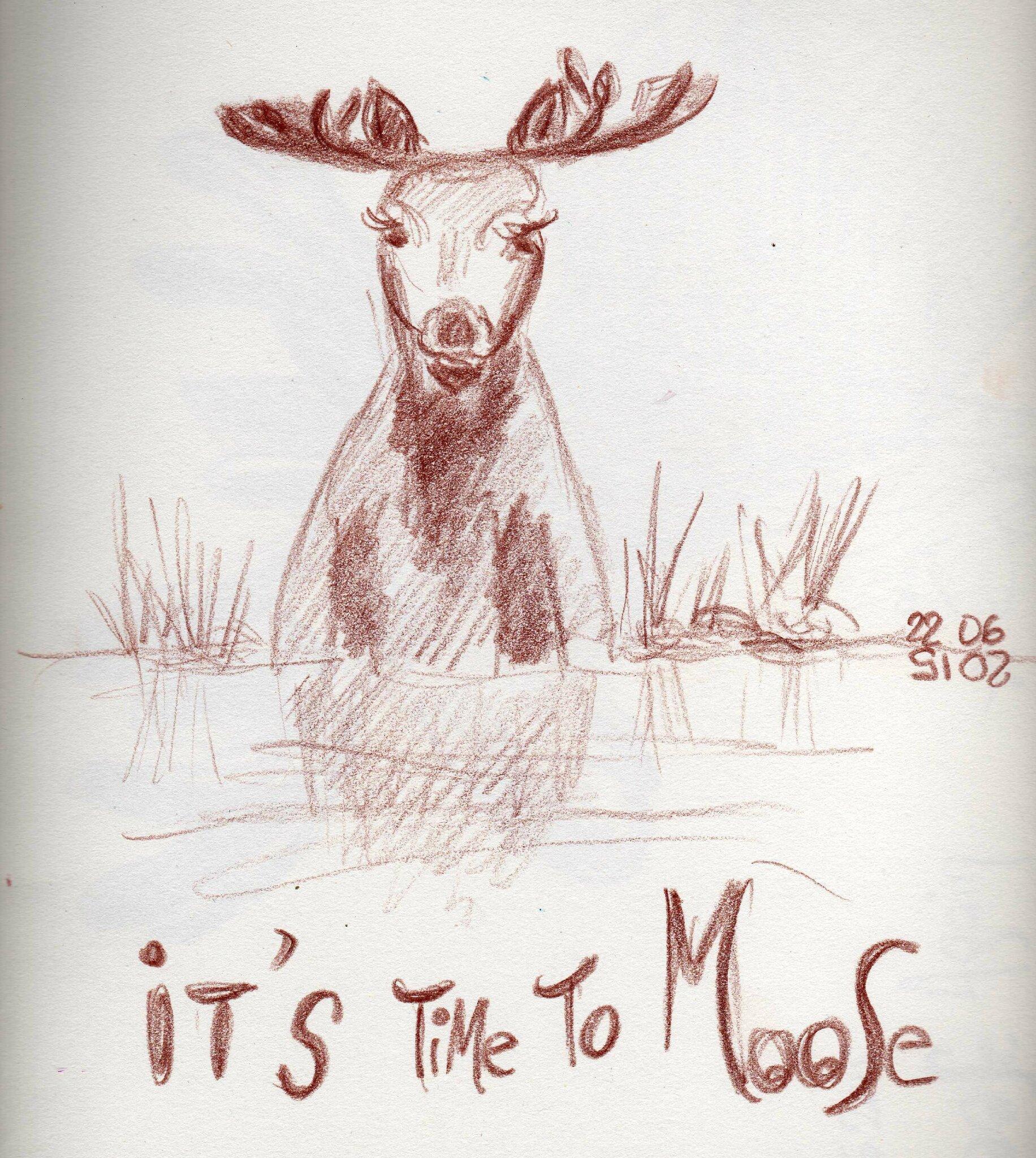 041_moose