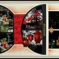 Pairi daiza 2014 - nocturne 2