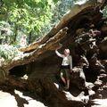 Yosemite - How big is a Seq
