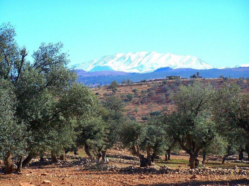 Route d'Azilal