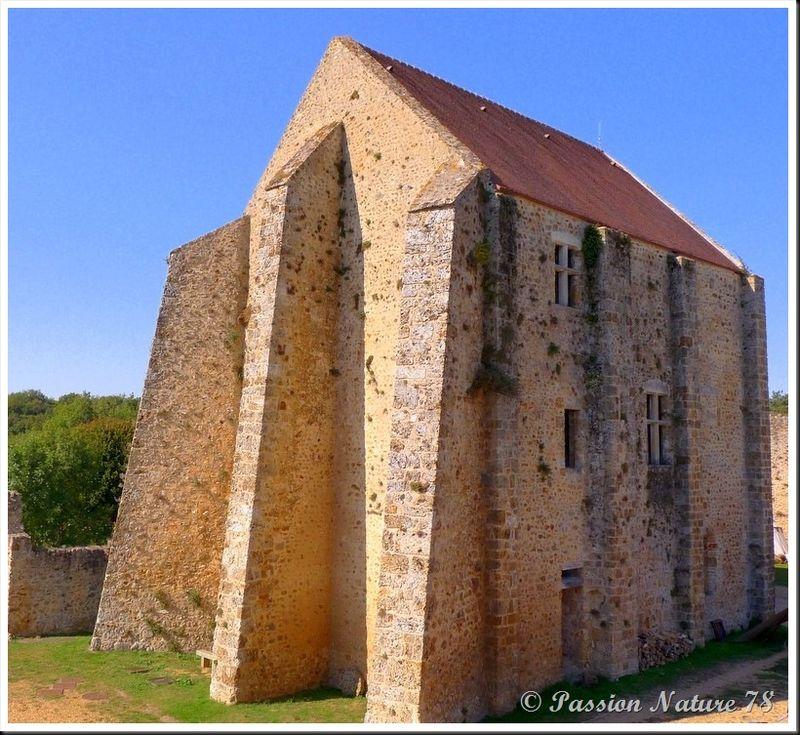 Le château de la Madeleine (5)