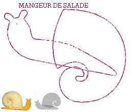 mange_salade