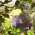 Fenêtre sur le château de rodié