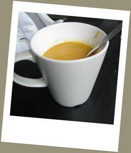 soupnik