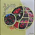 Les roses du jardin 1 Orion (1)