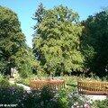 Roseraie du Parc du château d'eau à Colmar (68)
