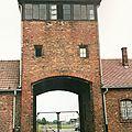 Birkenau, la porte de l'Enfer, près (Pologne)