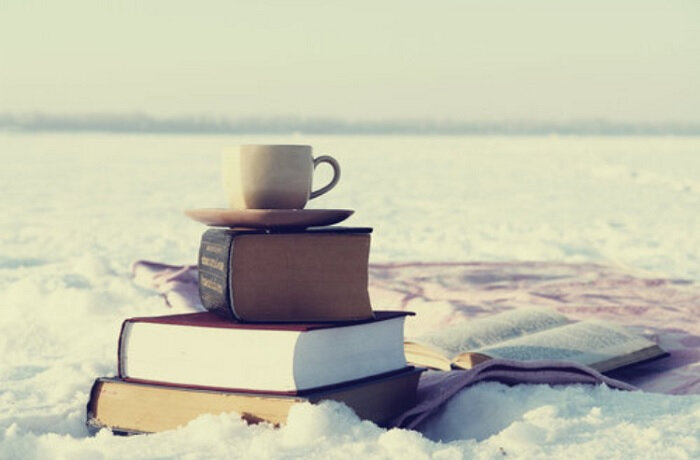 illu-livres-a-lire-sous-la-neige