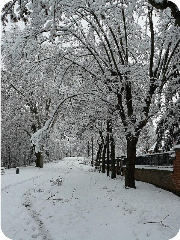 Quartier Drouot - Photo neige 10