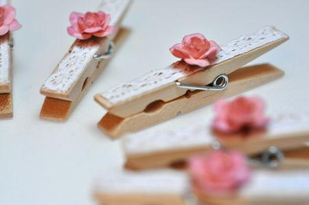 Pinces_rose_