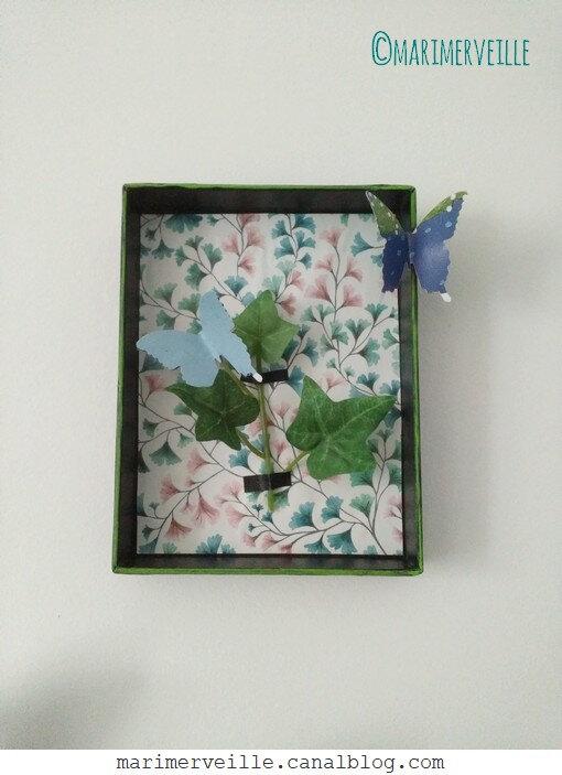 petite boîte aux papillons - Marimerveille