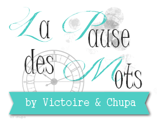 blog_la_pause_des_mots