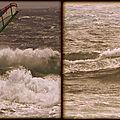 Le b.a ba de la vague !...