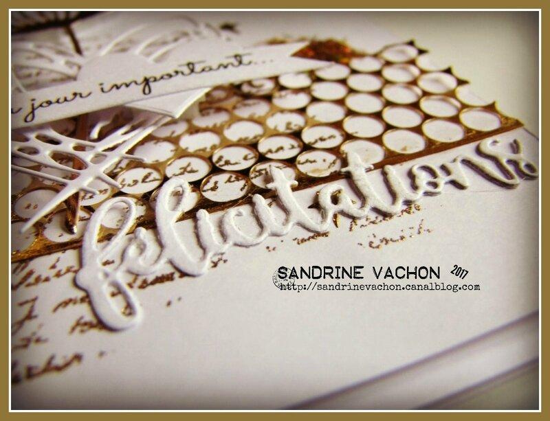 Sandrine VACHON défi 492 blog PCC (4)