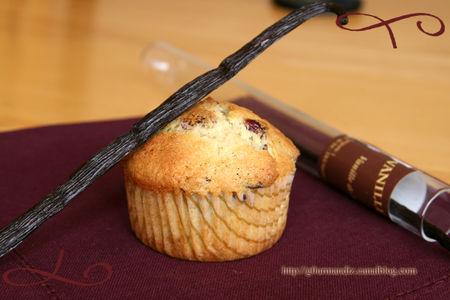 muffins_vanille_cramberries_3
