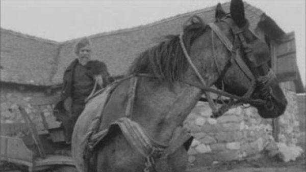 cheval de turin 2
