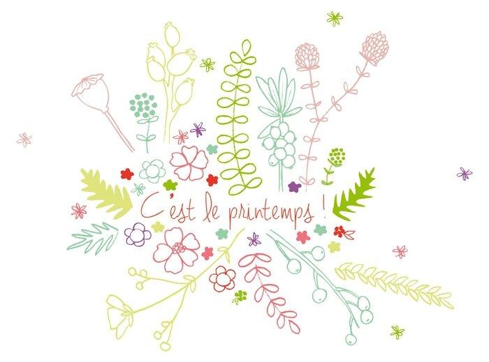 printemps-illustration-fleurs