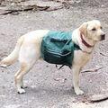 djaga prêt pour la randonnée