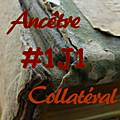 #1j1ancetre - #1j1collateral - 13 juillet