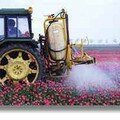Les pesticides en question.
