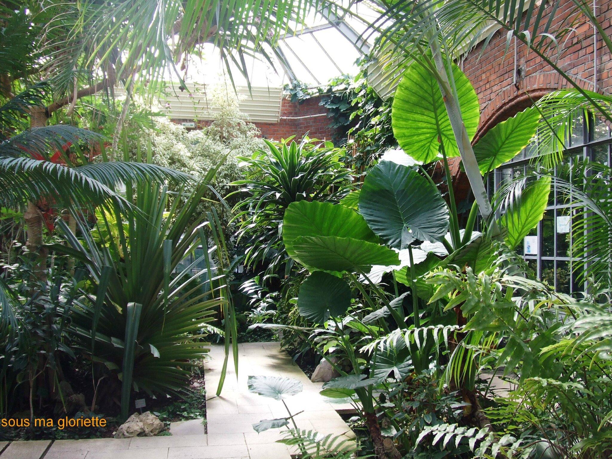 le jardin botanique de Metz - sous ma gloriette