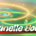 coccinellesonia 21