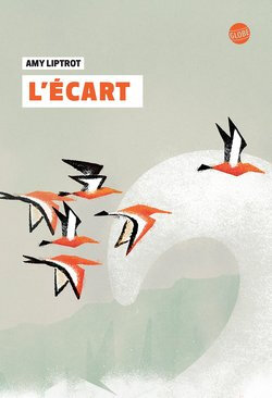 lecart-de-amy-liptrot