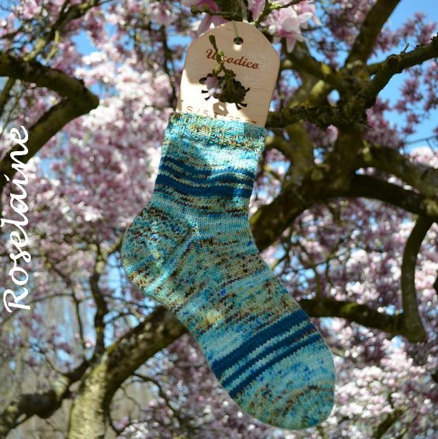 Roselaine cho7 avril 4