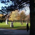 Mont royal 21oct 070