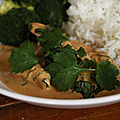 Curry penang au poulet