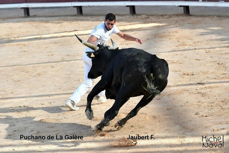 ISTRES 34